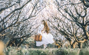 Picture trees, toy, spring, doll, dress, suitcase