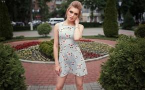 Picture dress, legs, sponge, Anya, Dmitry sn