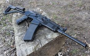 Wallpaper carabiner, smoothbore, self-loading, Vepr-12, the gun, Russia