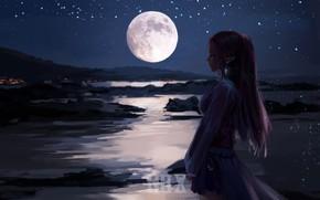 Wallpaper girl, night, the moon