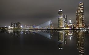 Wallpaper rotterdam, the city, night