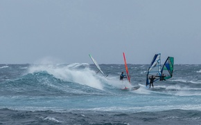 Wallpaper sail, the wind, regatta, Board, wave, Windsurfing, sea