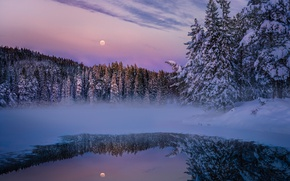 Wallpaper forest, haze, lake, the evening, the moon, nature, winter, snow