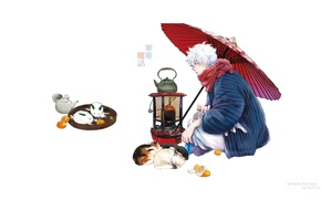 Picture snow, cats, umbrella, scarf, kettle, plate, white background, guy, cold, tray, fan art, tangerines, Gintama, …