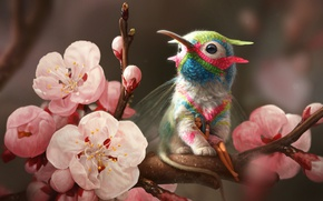 Picture flowers, elf, branch, spring, Hummingbird, Griffin
