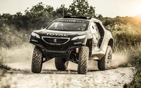 Picture 2008, Peugeot, Race, Dakar, Desert, 2015, DKR