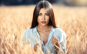 Picture field, girl, the sun, portrait, makeup, hairstyle, ears, shirt, brown hair, beautiful, bokeh, Alessandro Di …