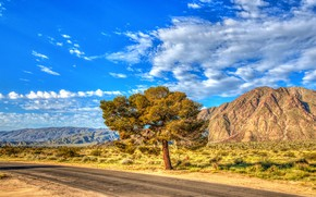 Picture road, the sky, the sun, clouds, tree, hills, HDR, CA, USA, the bushes, Anza-Borrego, State ...