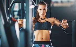 Wallpaper machine, workout, fitness, gym