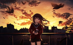 Picture sunset, birds, smile, anime, art, the camera, girl, Natsu tor