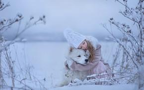 Picture winter, mood, dog, friendship, girl, friends, hugs, Samoyed