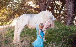 Picture horse, fairy, unicorn, girl