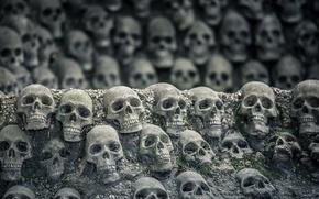 Wallpaper background, the darkness, skull