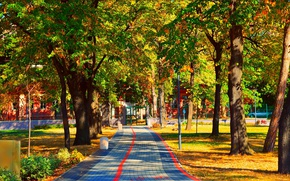 Picture Autumn, Trees, Park, Fall, Track, Park, Autumn, Colors, Trees, Path