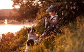Picture river, dog, boy, cap, friends, accordion