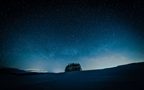 Picture field, the sky, stars, trees, night
