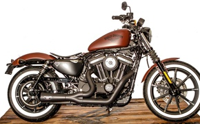 Picture motorcycle, Harley Davidson, bike, motor bike, Battle of Kings