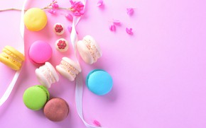 Picture flowers, flowers, cakes, dessert, dessert, sweet, french, macaron, pink, background, tender, pink, petals, sweet, macaroon, …