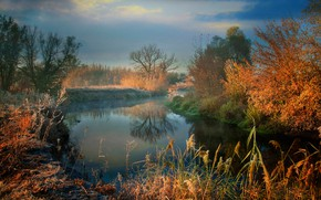 Picture frost, autumn, grass, the sun, trees, fog, river, morning