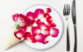 Picture Rose, petals, horn, Cutlery