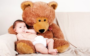 Picture toy, baby, bear, plush, baby