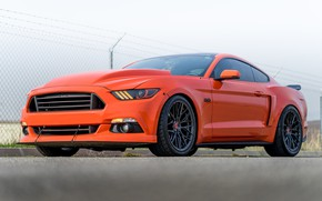 Picture Mustang, Ford, Carbon, 107, Graphite, V-FF