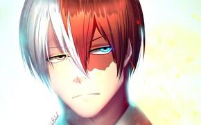 Picture portrait, anime, art, guy, Boku no Hero Academy, My heroic academia, Todoroki shouto