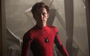 Picture cinema, spider, boy, Marvel, movie, Spider-man, hero, film, Spiderman, uniform, yuusha, seifuku, Justice League, Columbia …