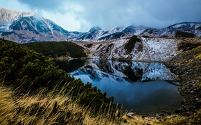 Picture grass, clouds, landscape, mountains, branches, nature, fog, lake, reflection, stones, hills, shore, vegetation, slope, pine, …