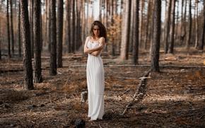 Picture forest, dress, the beauty, bokeh, Anna Seregina