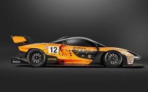 Picture Concept, McLaren, GTR, racing car, side view, 2018, Senna