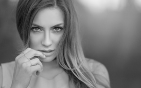 Picture look, girl, face, background, model, hand, portrait, makeup, hairstyle, black and white, beauty, bokeh, DAVID …