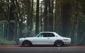 Picture Auto, White, Forest, Machine, Nissan, Nissan, Car, 2000, Skyline, Nissan Skyline, 2000GT, Japanese, Side view, …