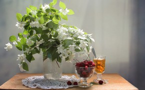 Picture cherry, tea, Bouquet, still life, Jasmine