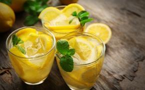 Picture lemon, glasses, citrus, drink, fresh, mint, lemonade, drink