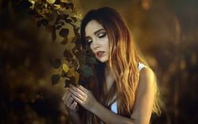 Wallpaper girl, branch, Laulights