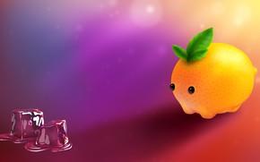 Picture ice, orange, humor