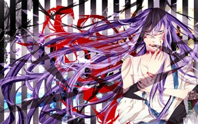 Picture look, art, guy, Vocaloid, Kamui Gakupo