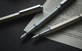 Picture pen, handle, page