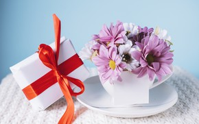 Picture flowers, gift, Holiday, bow, chrysanthemum, box