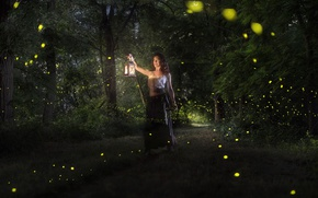 Picture forest, girl, magic, magic, lights, flashlight