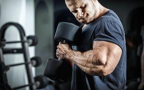 Picture gym, dumbbell, bodybuilder