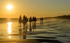 Picture beach, ocean, people, tourism, camels