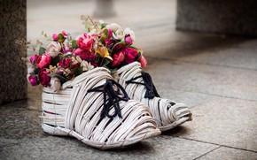 Picture flowers, decor, bouquets, shoes