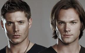 Picture look, brothers, Dean, Supernatural, Supernatural, SEM