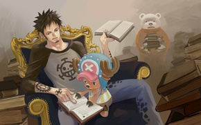 Picture books, anime, art, guy, One Piece