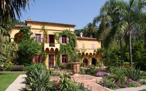 Picture flowers, palm trees, Villa, garden