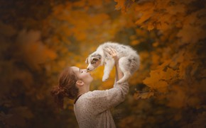 Picture autumn, girl, puppy