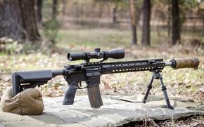 Picture optics, muffler, fry, automatic carbine