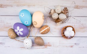 Picture eggs, feathers, Easter, socket, Holiday, wooden background